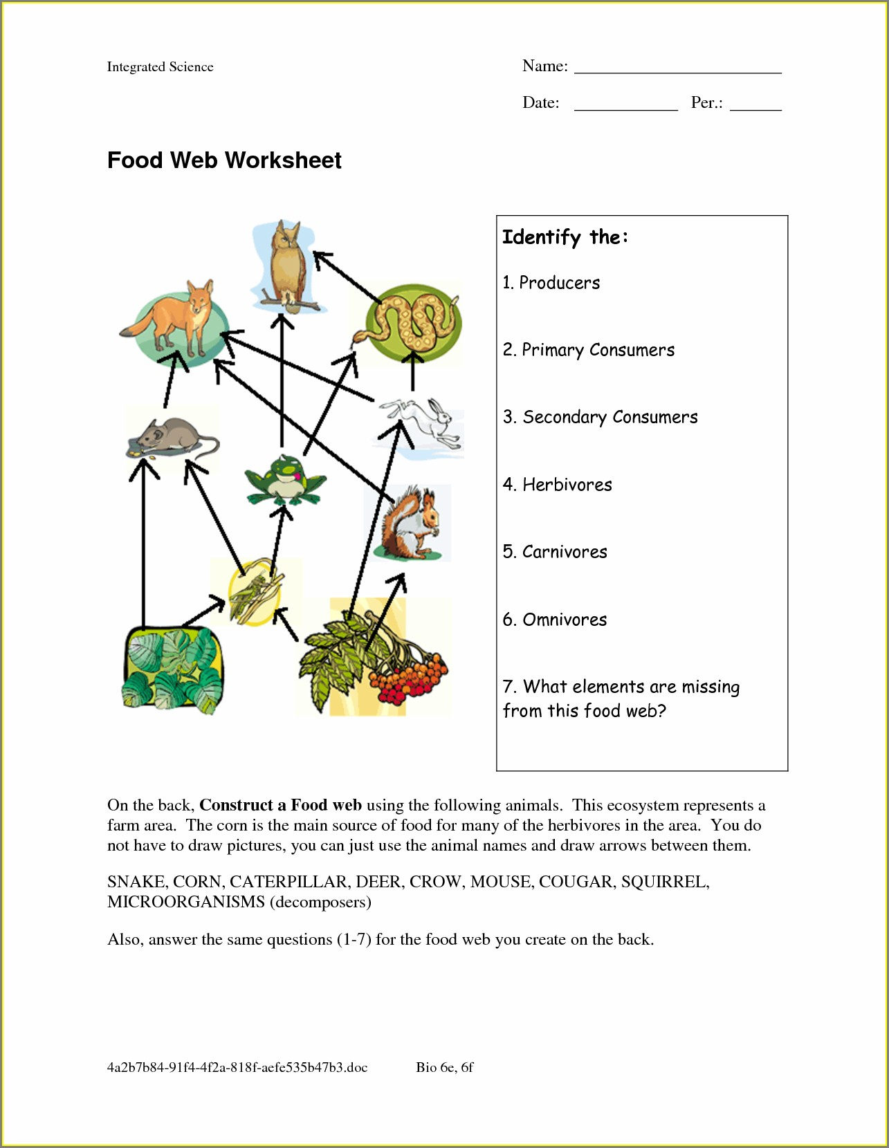 Food Web Worksheet With Answers