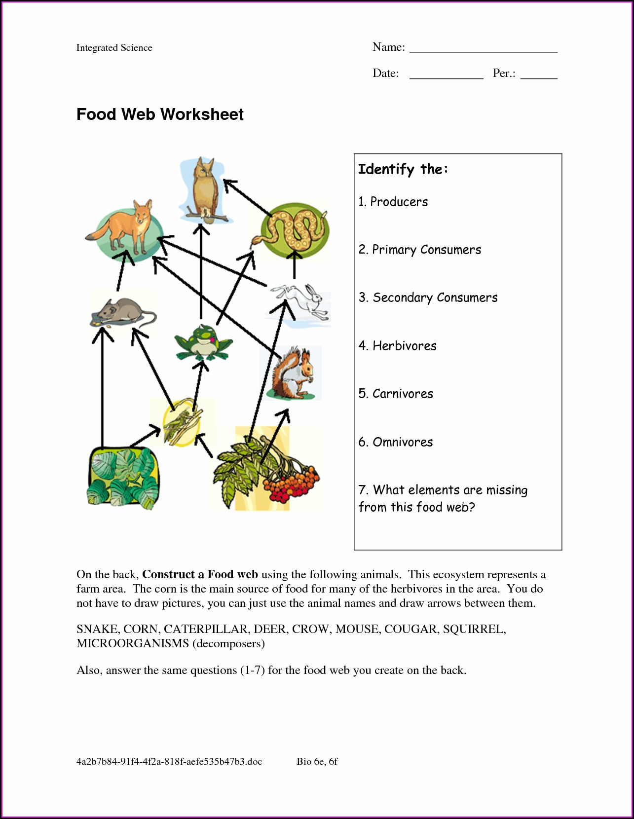 Food Web Worksheet Year 2
