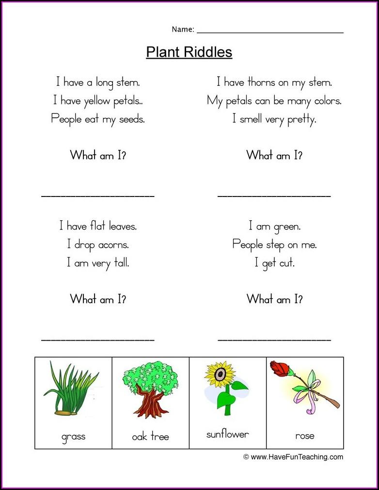 Free Kindergarten Worksheets About Plants