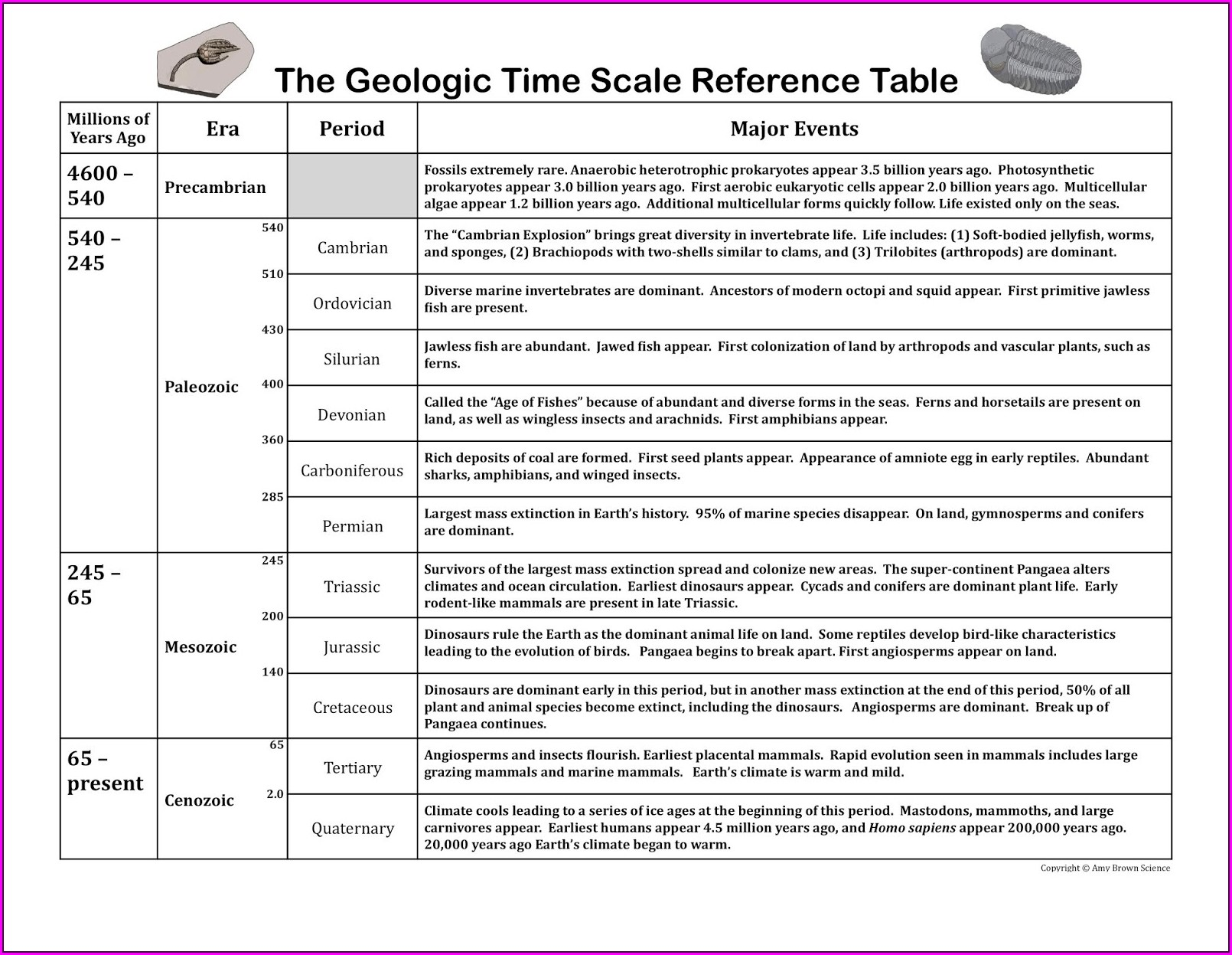 History Of The Earth Timeline Worksheet Answers