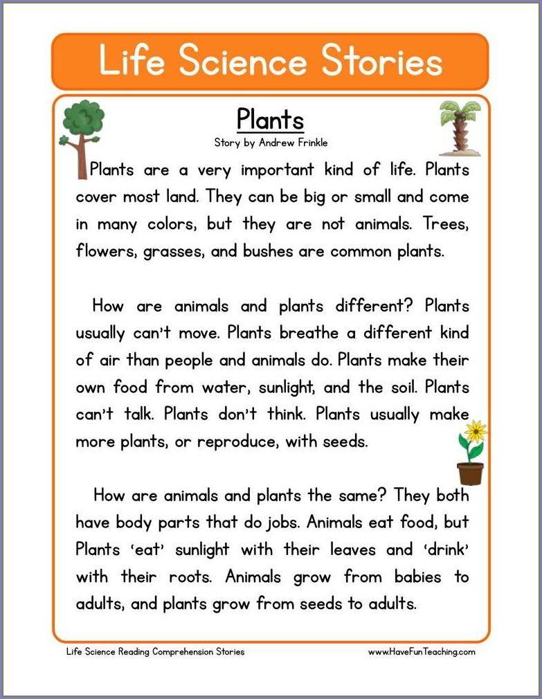 How Do Plants Make Food Worksheet