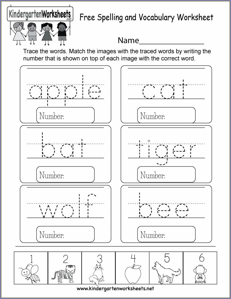 Math Vocabulary Worksheet Template