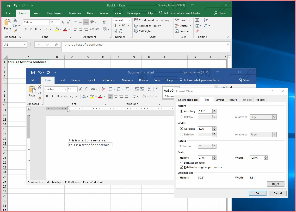 Microsoft Excel Worksheet Object In Word