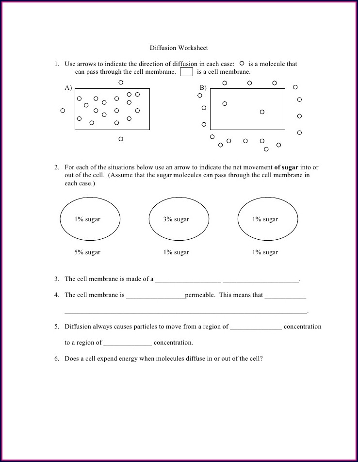 Middle School Diffusion And Osmosis Worksheet
