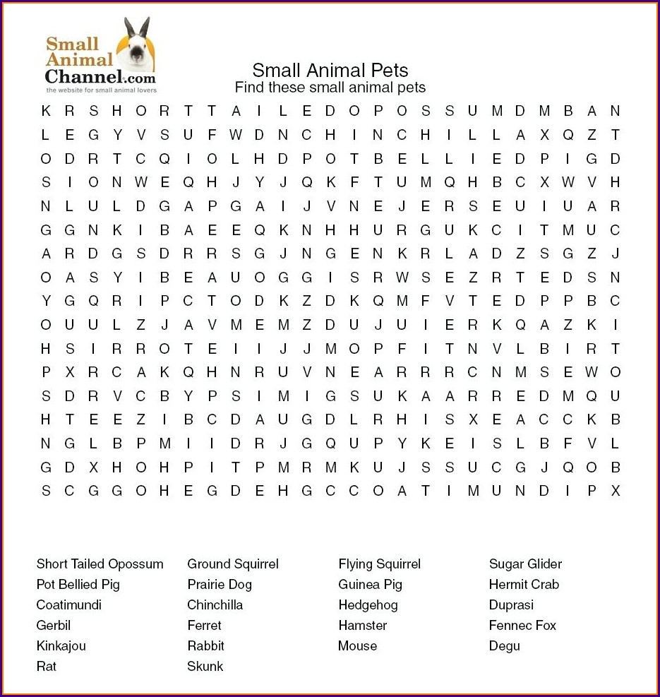 Printable Word Search Zoo Animals