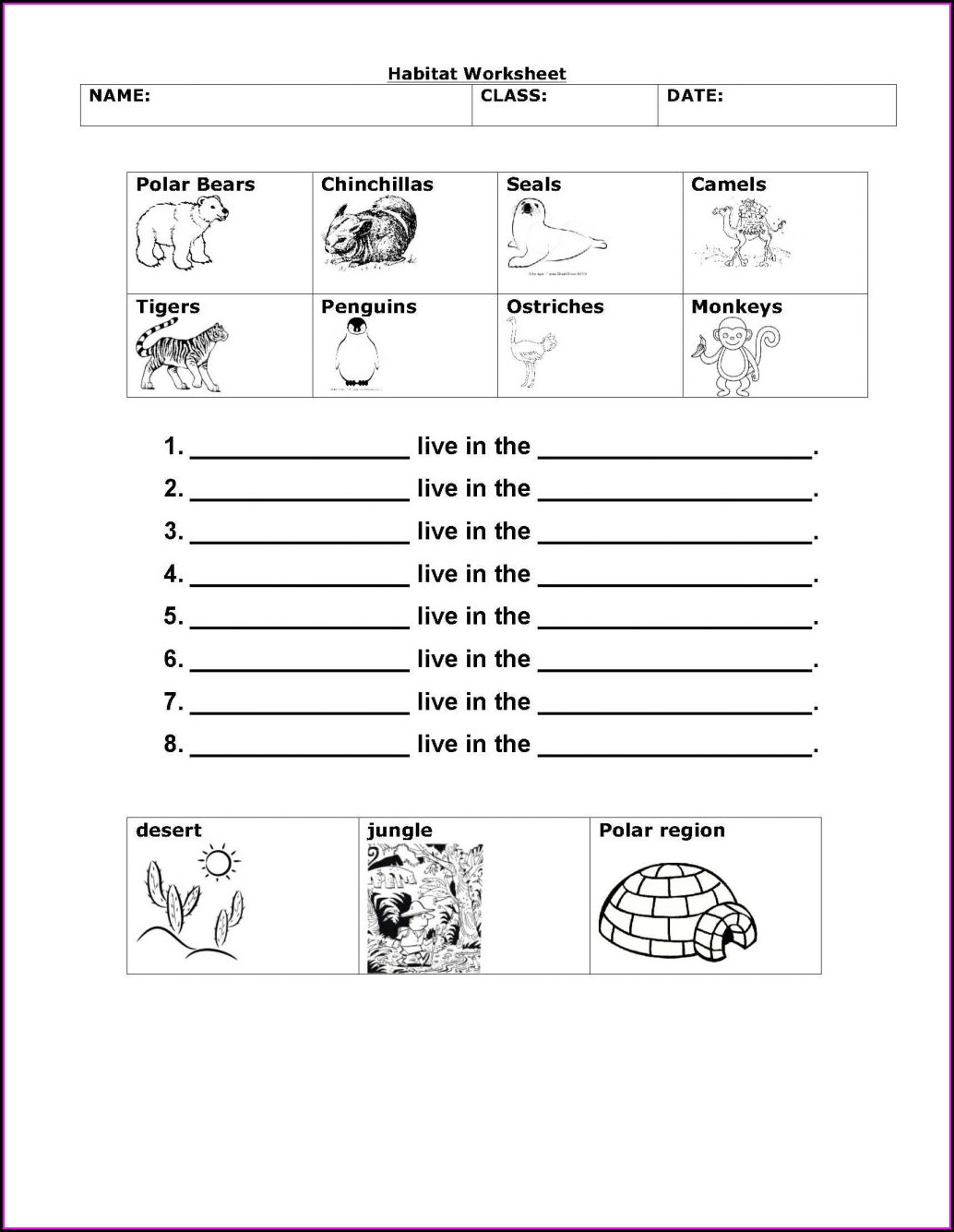 Printable Worksheets For 4th Grade Science