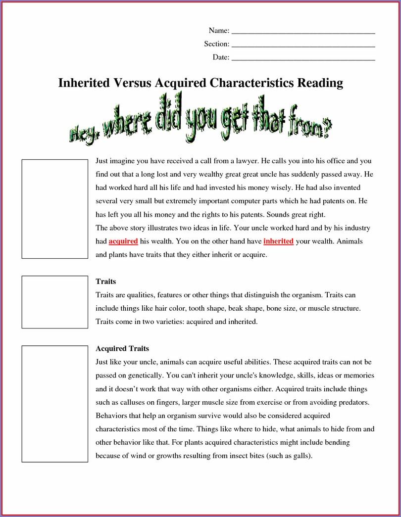 Reading Comprehension Worksheets Doc