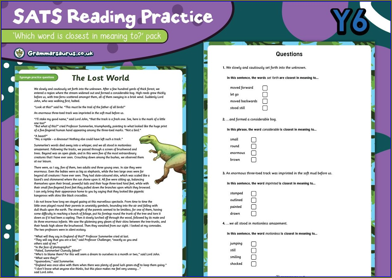 Reading Comprehensions Ks2 Sats