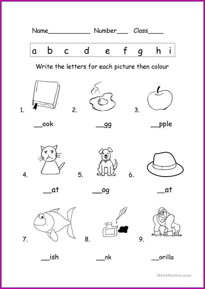 Science Activity Worksheet For Kindergarten