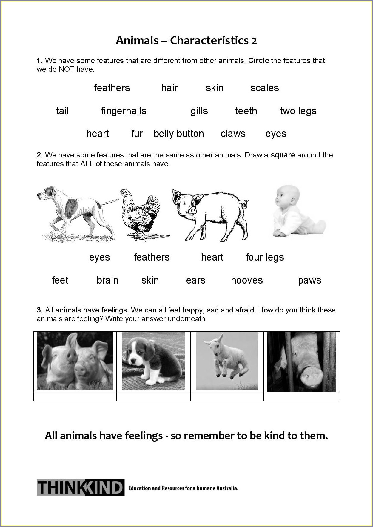 Science Living Things Worksheets