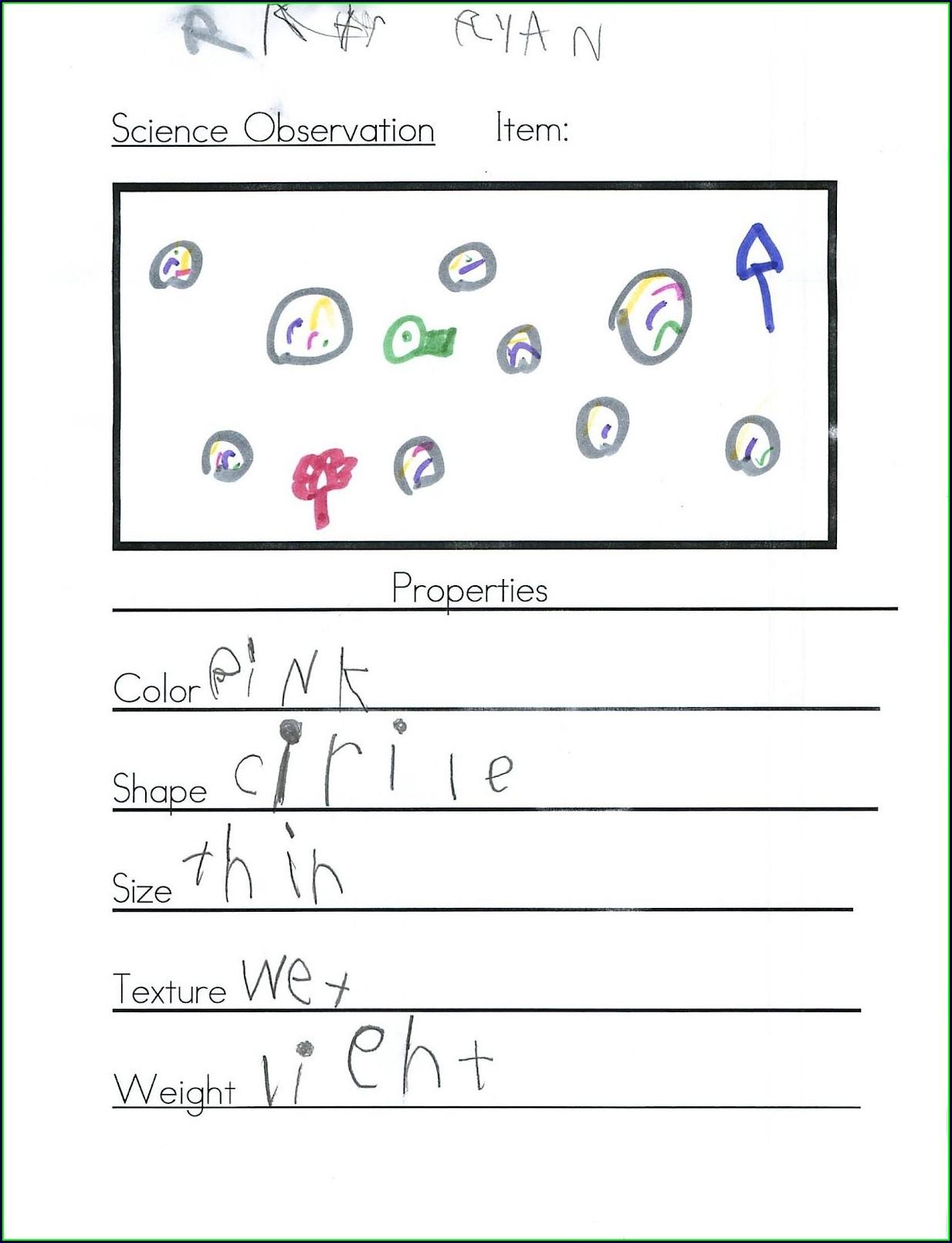 Science Tools Worksheet Elementary