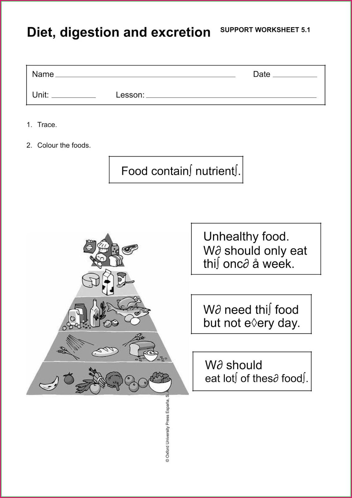 Science Worksheet Primary 3