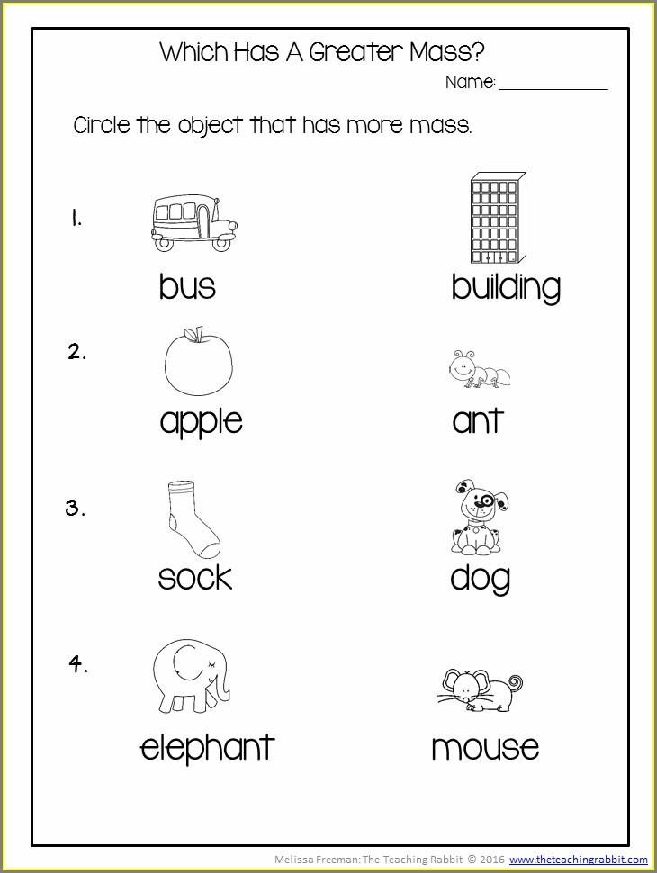 Second Grade Measurement Worksheet For Grade 2
