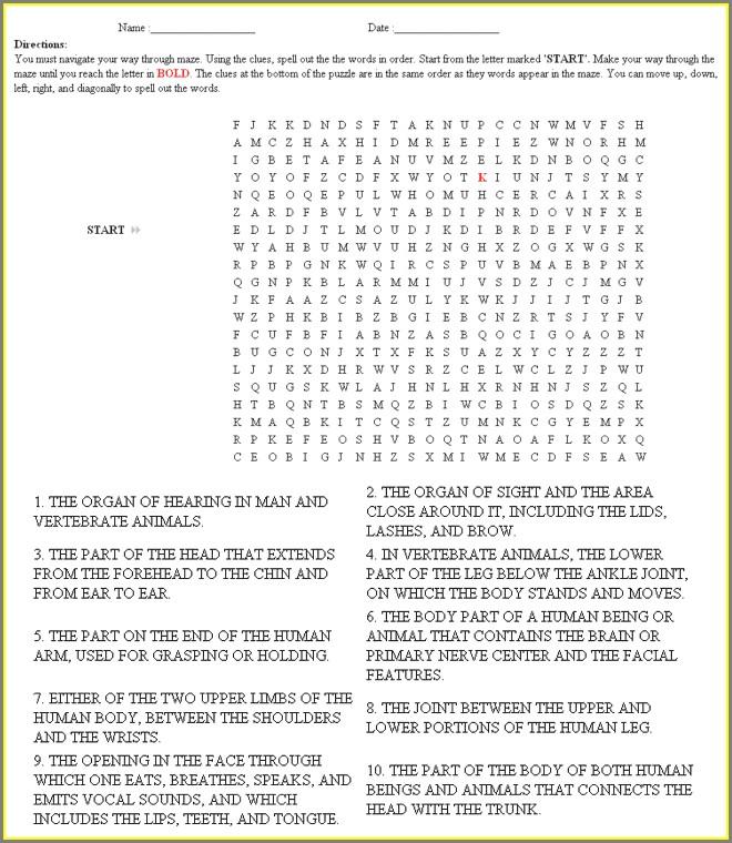 Vocabulary Word Worksheet Generator