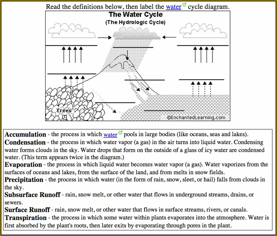Water Cycle Test Worksheet
