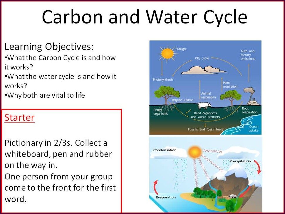 Water Cycle Worksheet Year 9