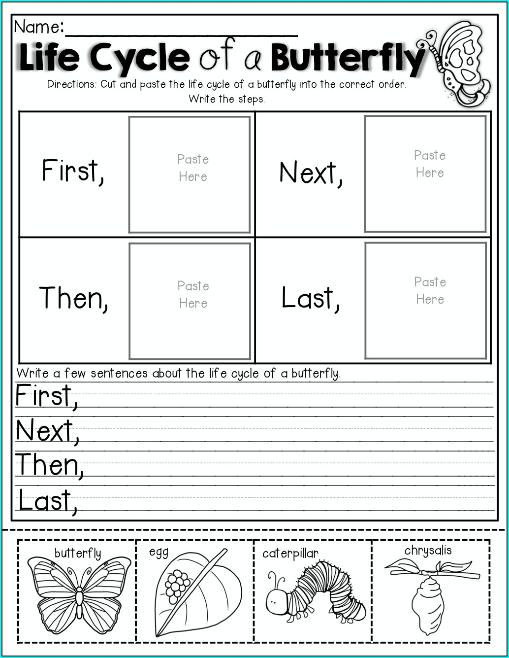 Butterfly Life Cycle Order Worksheet