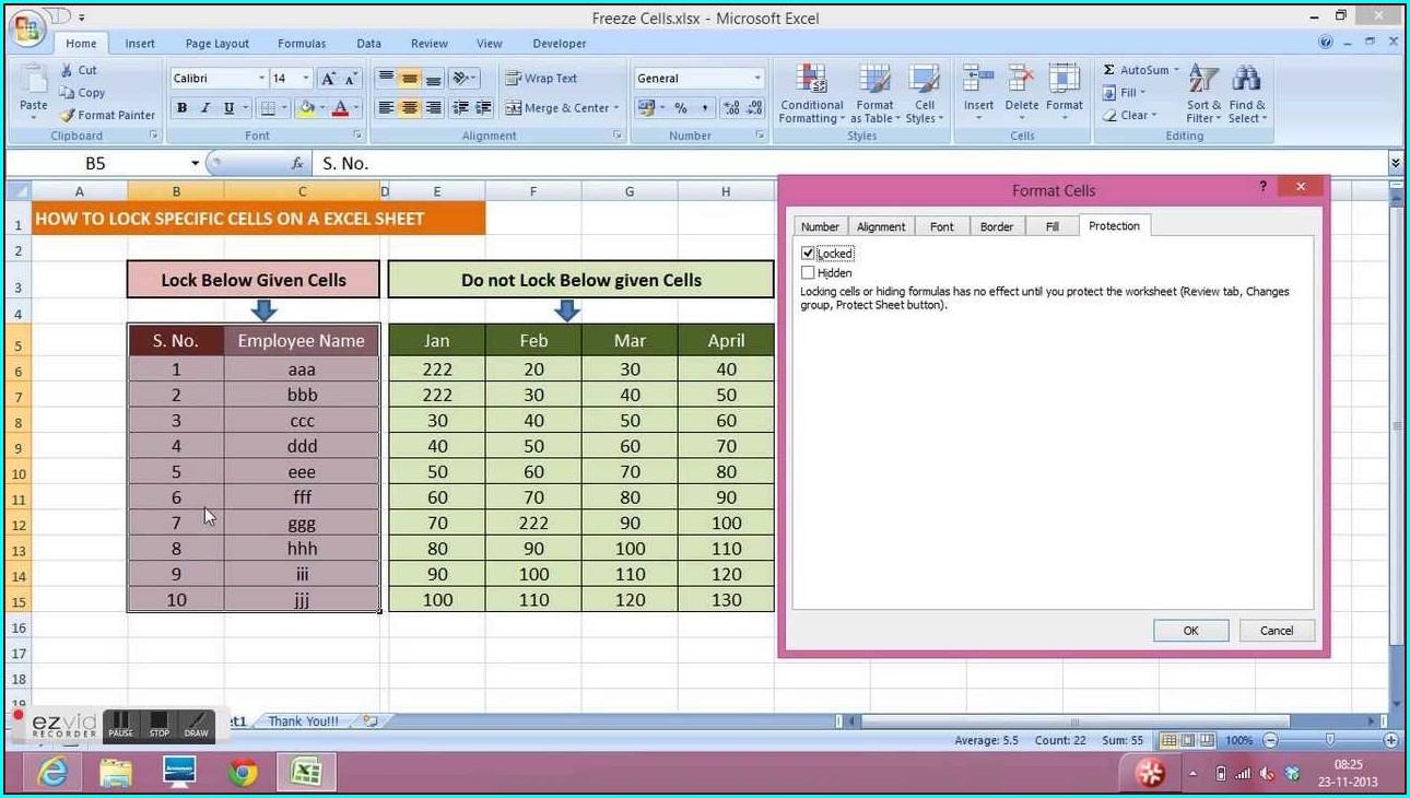Excel 2007 Protct Worksheet
