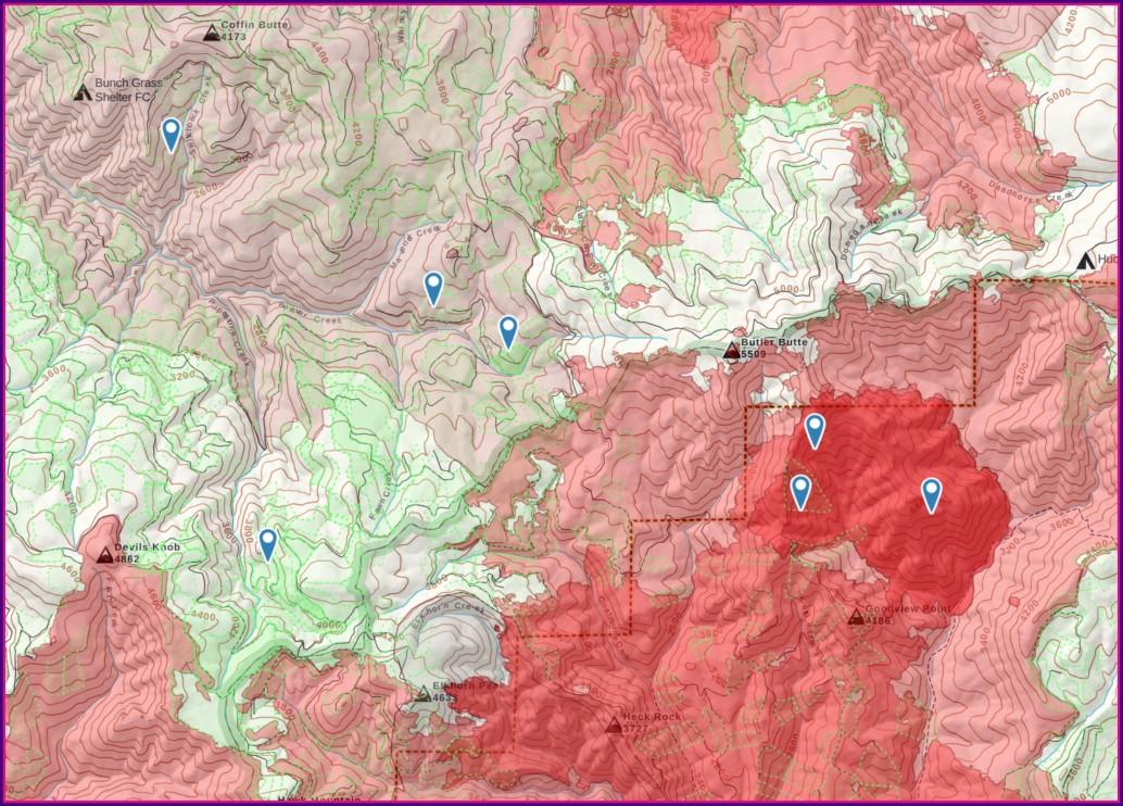 Morel Mushroom Hunting Map 2020