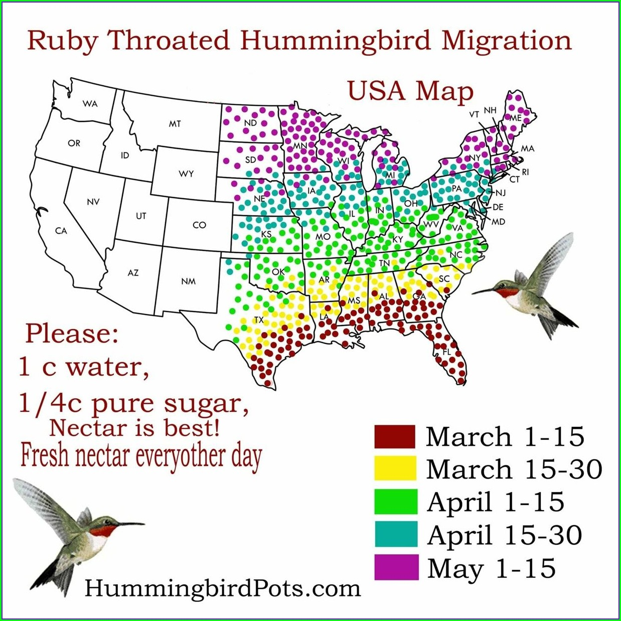 Ruby Throated Hummingbird Migration Map 2019