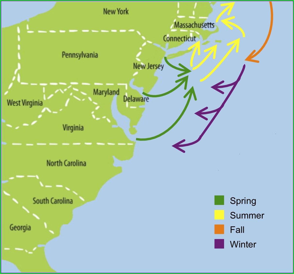 Striper Migration Map September 2018