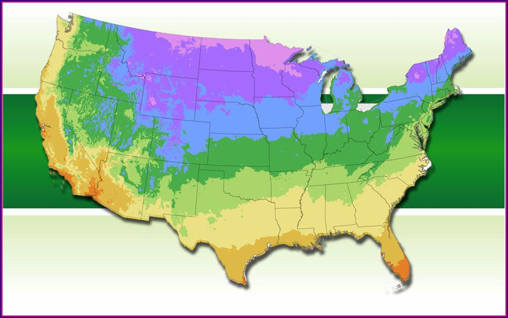 Usda Hardiness Zone Map 2020