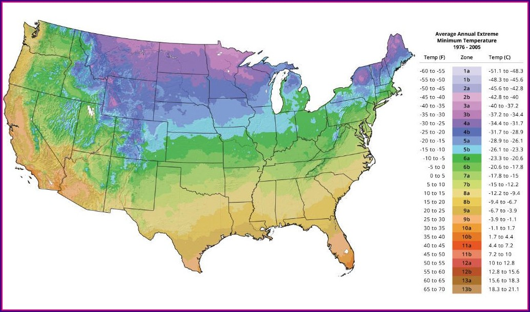 Usda Plant Hardiness Zone Map 2020