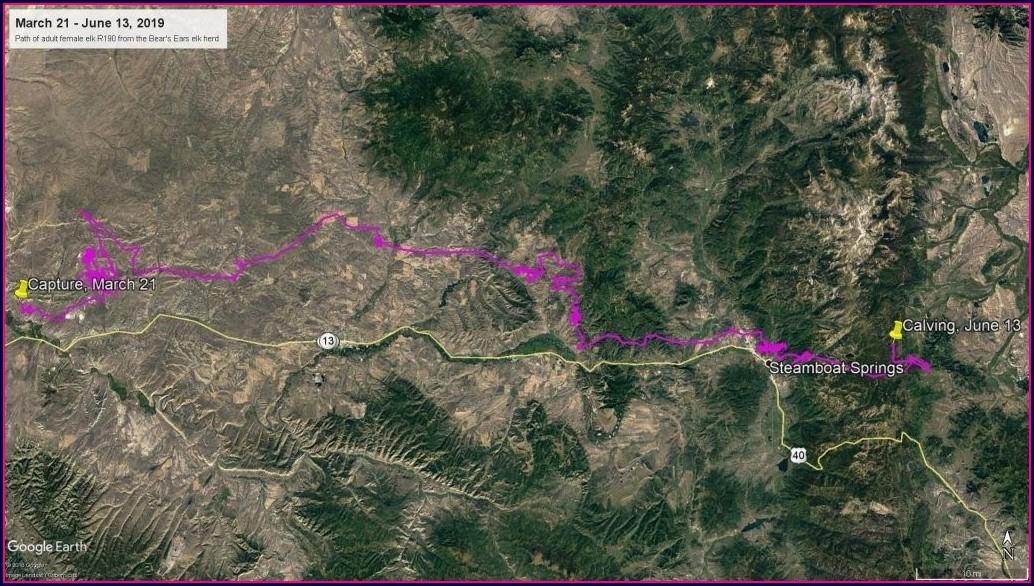 Colorado Elk Migration Map 2019