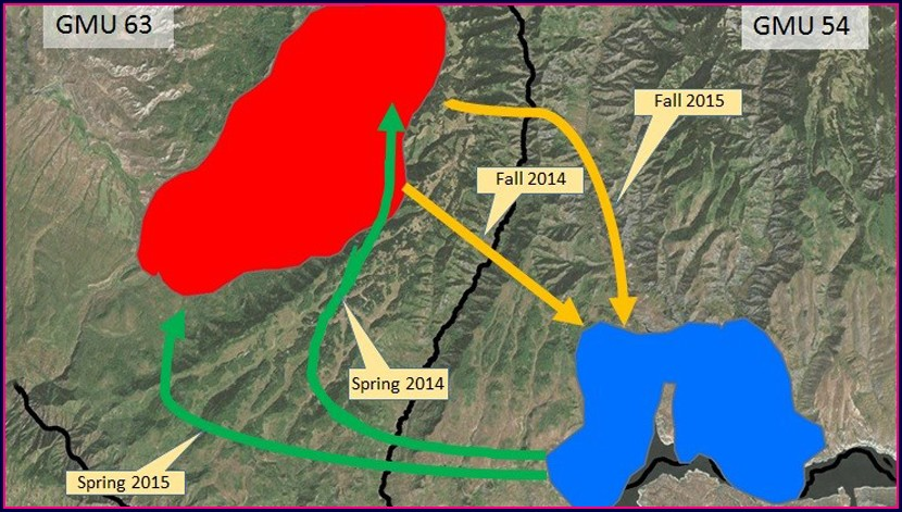 Colorado Elk Migration Map