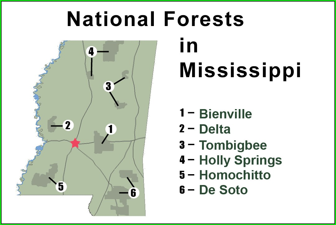 Desoto National Forest Hunting Map