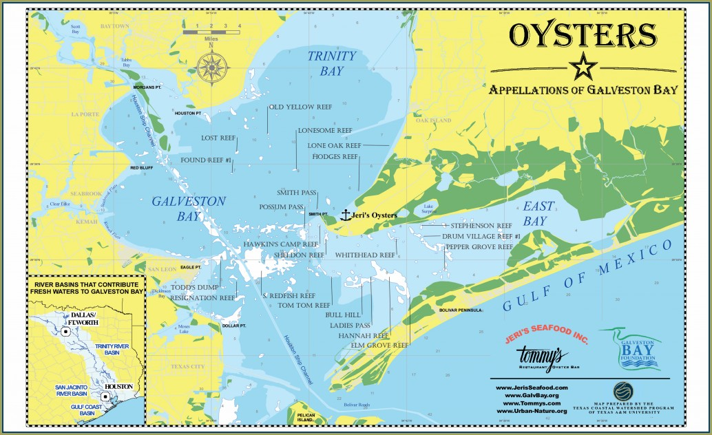 Galveston Bay Fishing Map Pdf