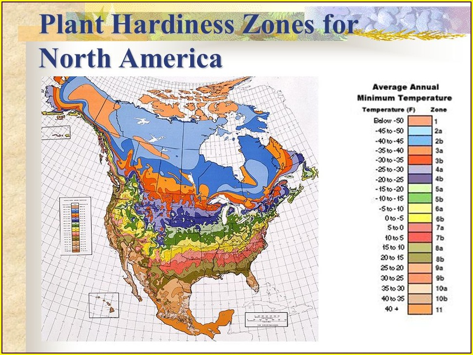 Map Of Hardiness Zones In North America