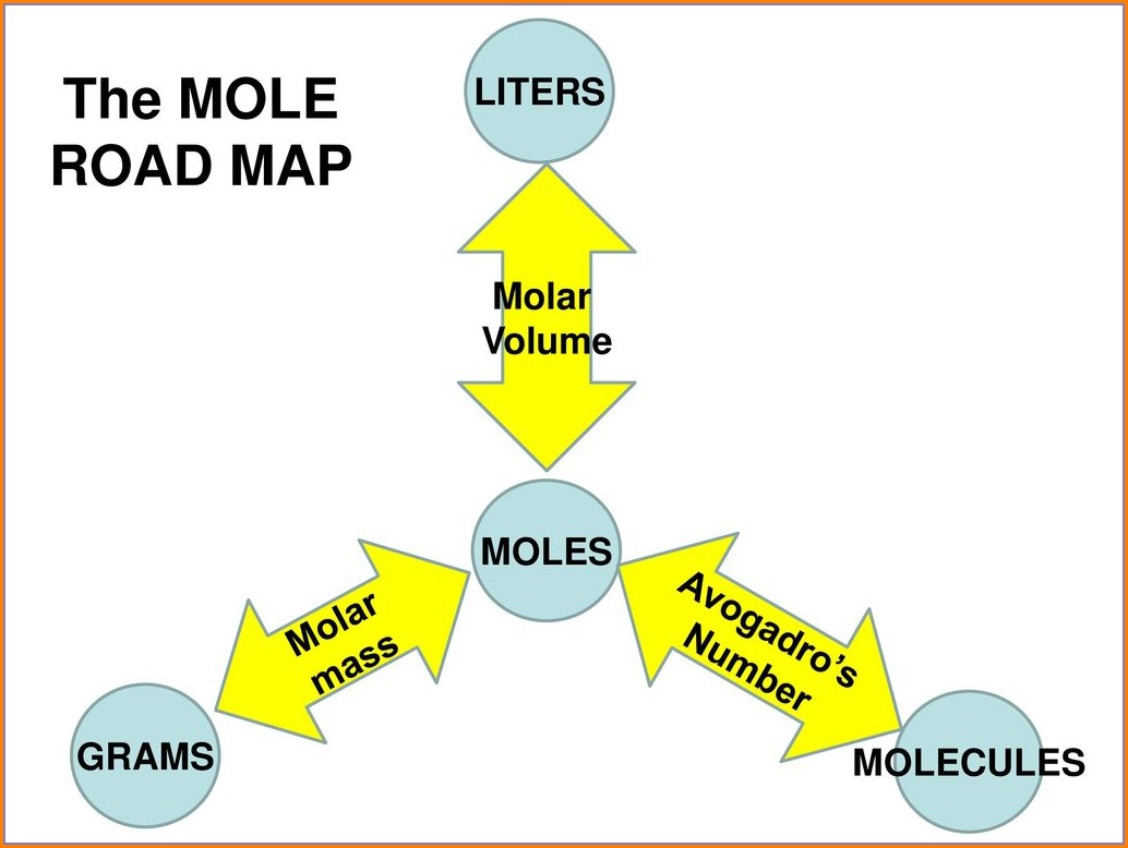 Mole Road Map Worksheet Answers