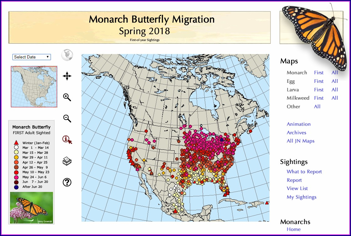 Monarch Butterfly Migration Map 2018
