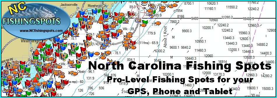 Nc Saltwater Fishing Maps