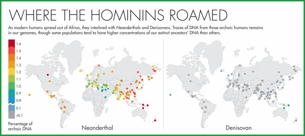 Neanderthal Dna Percentage Map