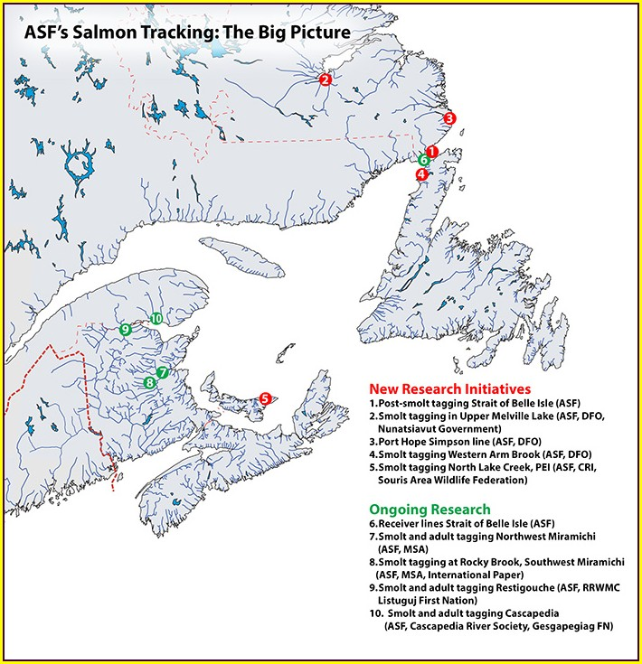 Newfoundland Salmon Rivers Map