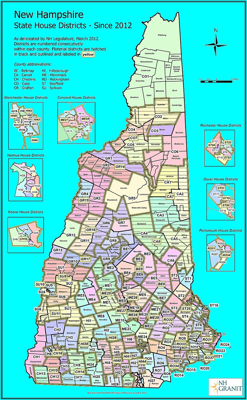 Nh State Representative District Map