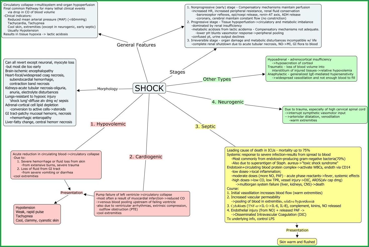 Nursing Student Sepsis Concept Map