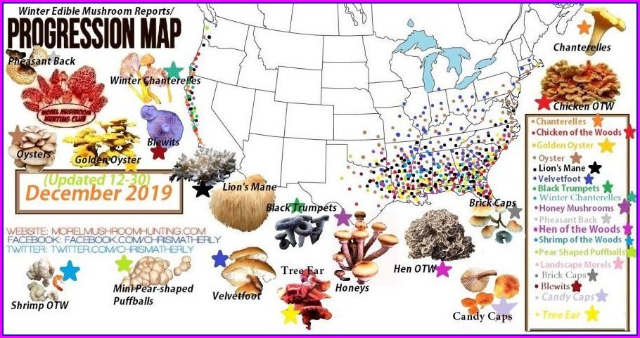 Oregon Mushroom Hunting Map
