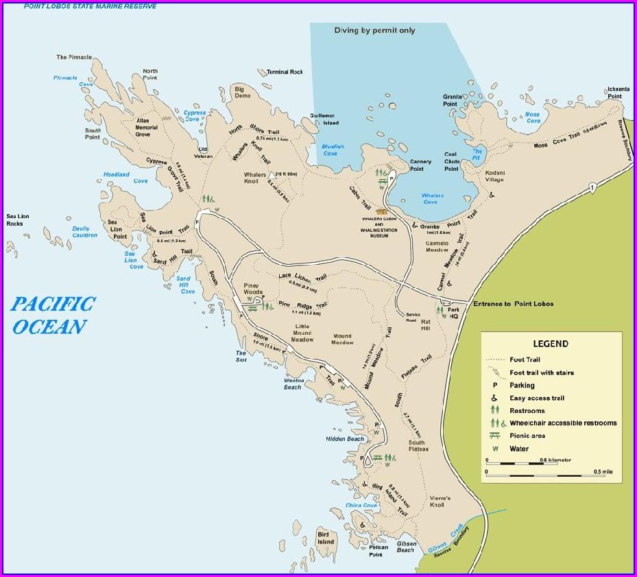 Point Lobos Trail Map
