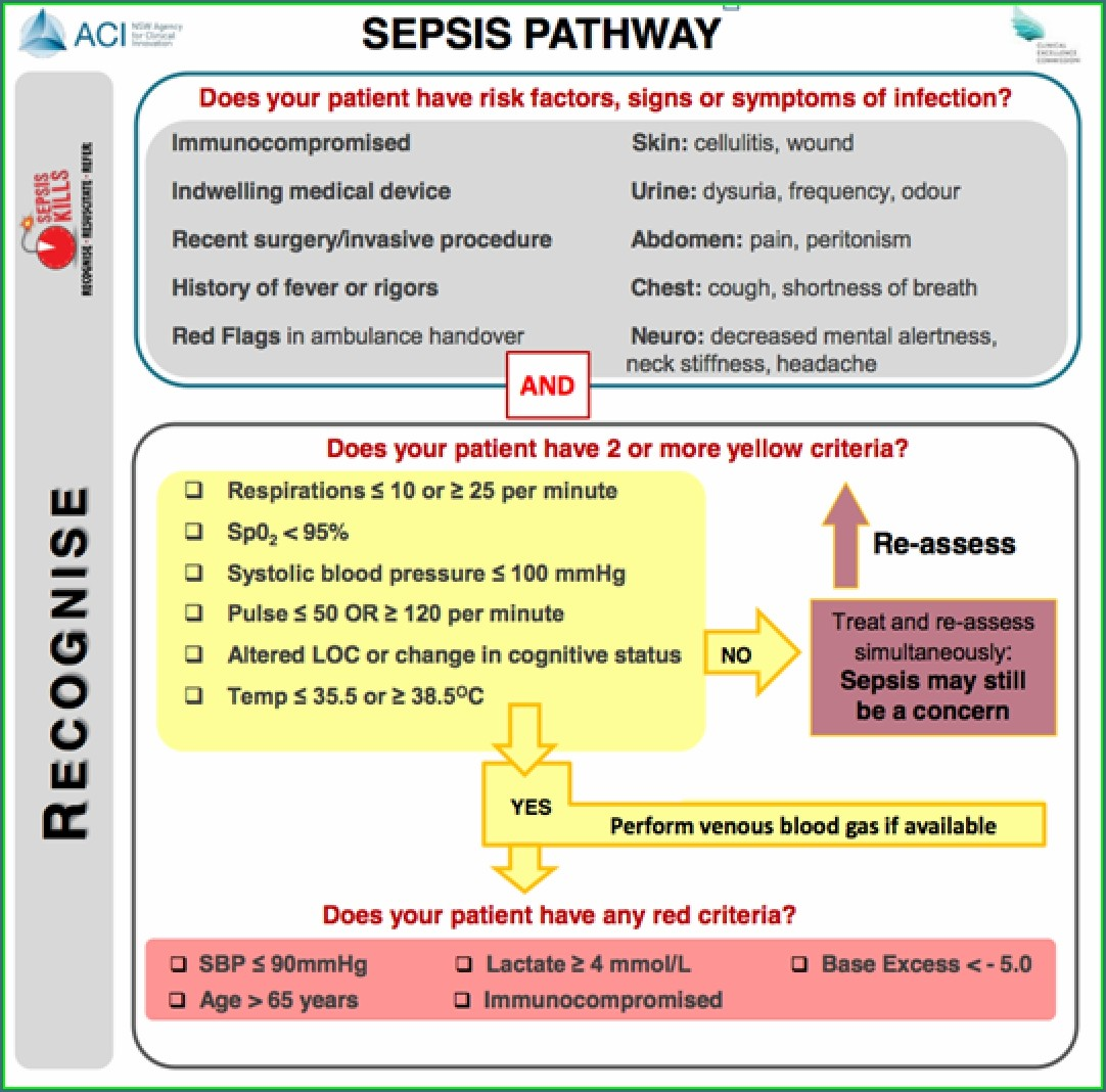 Sepsis Concept Map Nursing