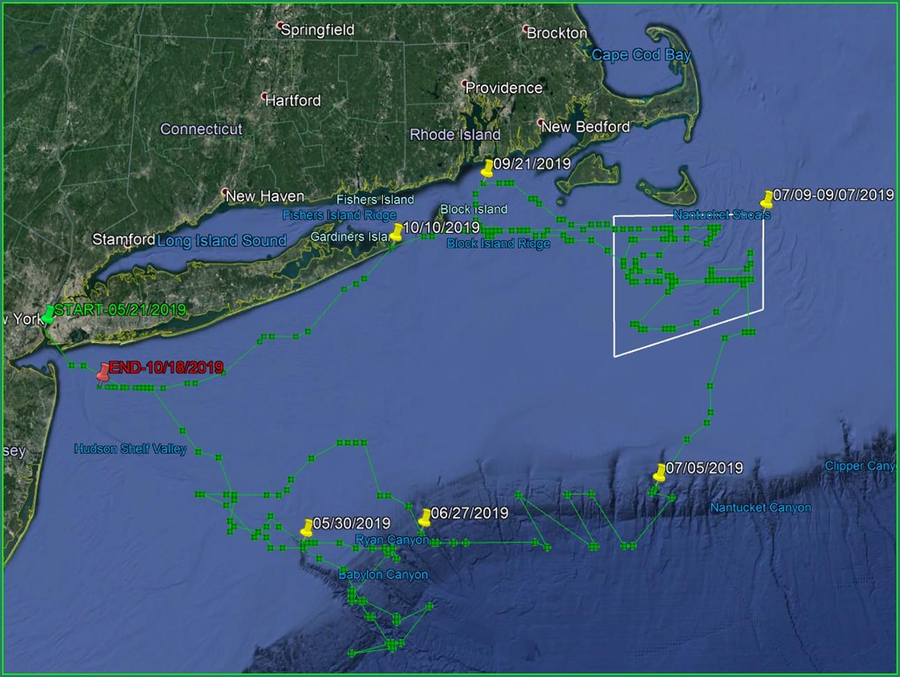 Striped Bass Migration Map July 2019