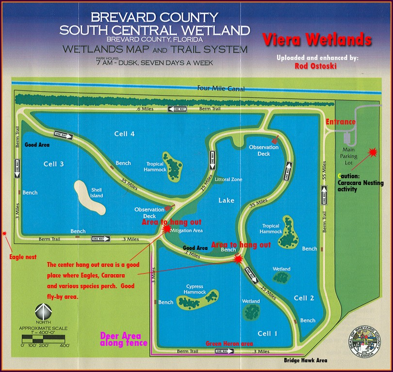 Brevard County Wetlands Map