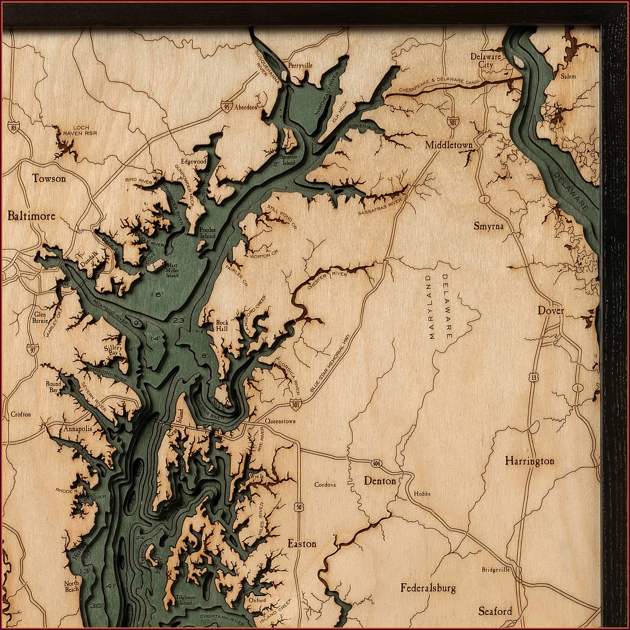 Chesapeake Bay Topographic Map