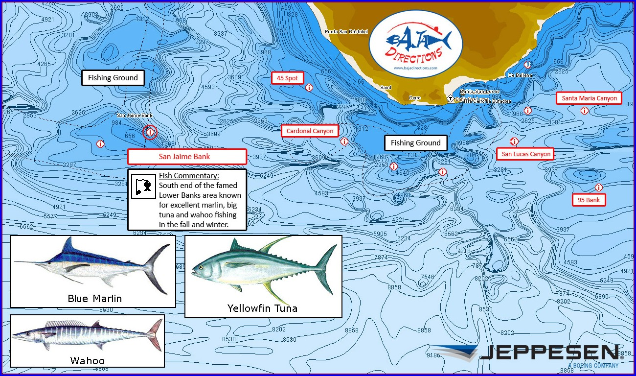 Socal Saltwater Fishing Map