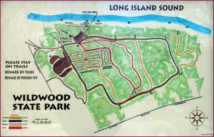 Wildwood State Park Ny Campground Map