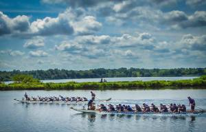 Cornwall Waterfest Dragon Boat Races @ Cornwall Canal |  |  |