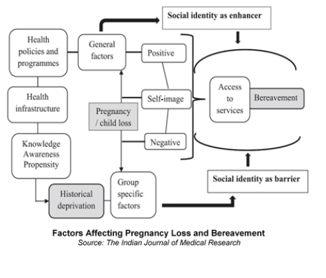 Factors-Affecting-Pregnancy-Loss