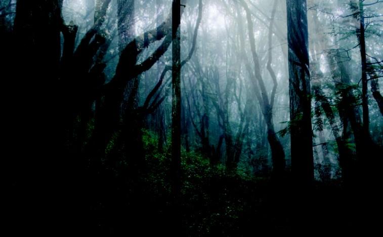Canadian Forests,Supernatural, Algernon Blackwood